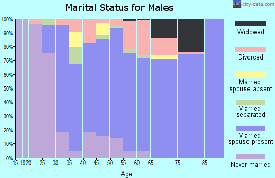 Zip code 13114 marital status for males