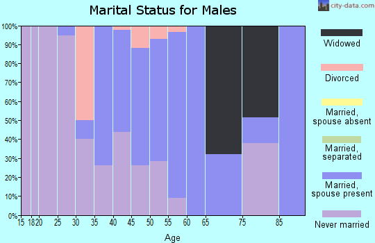 Zip code 13120 marital status for males