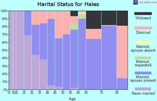 Zip code 13135 marital status for males