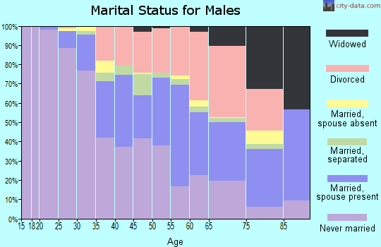 Zip code 13204 marital status for males