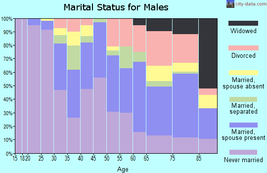 Zip code 13205 marital status for males