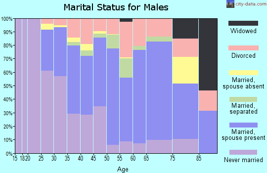 Zip code 13207 marital status for males