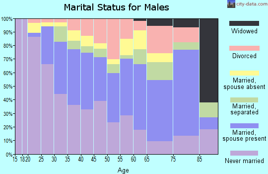 Zip code 13208 marital status for males