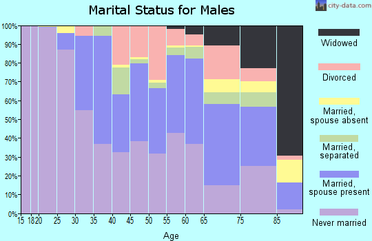 Zip code 13210 marital status for males