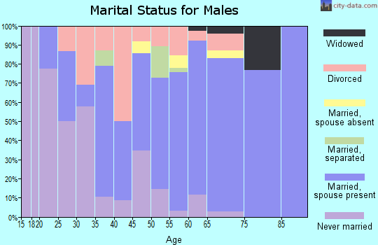 Zip code 13320 marital status for males
