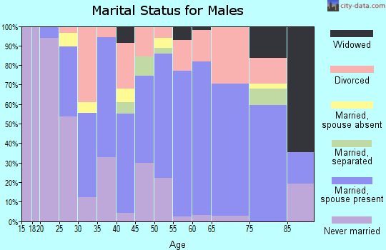 Zip code 13329 marital status for males