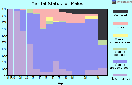Zip code 13340 marital status for males