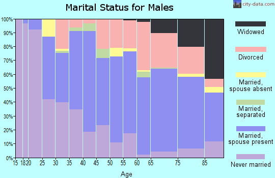 Zip code 13365 marital status for males