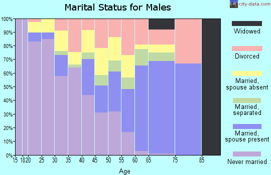 Zip code 13403 marital status for males