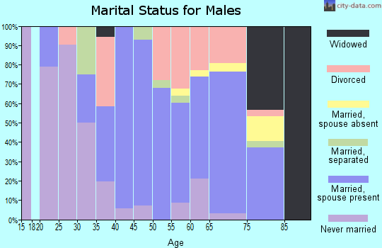Zip code 13428 marital status for males