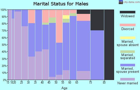 Zip code 13471 marital status for males