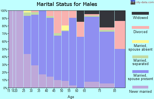 Zip code 13491 marital status for males