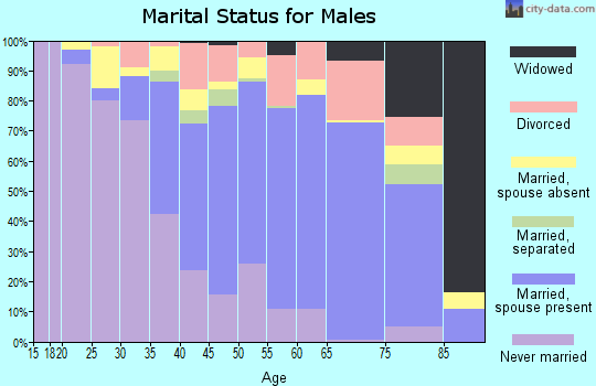 Zip code 13642 marital status for males