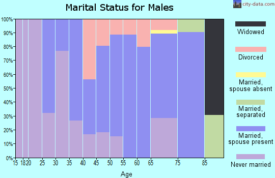 Zip code 13746 marital status for males
