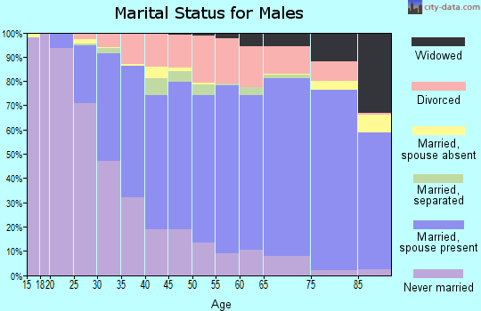 Zip code 13760 marital status for males