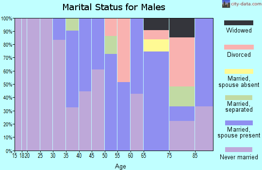 Zip code 13786 marital status for males