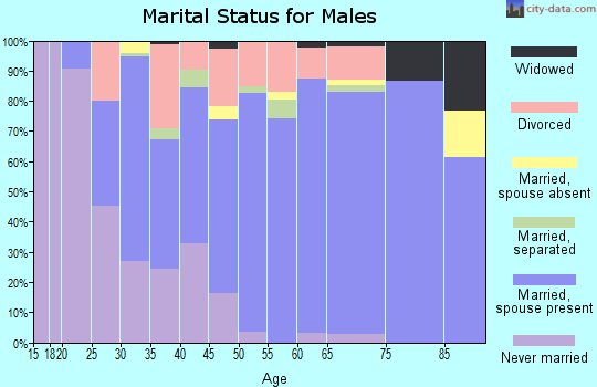 Zip code 13803 marital status for males