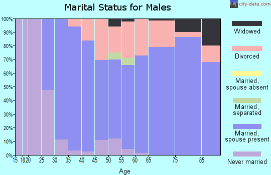Zip code 13811 marital status for males