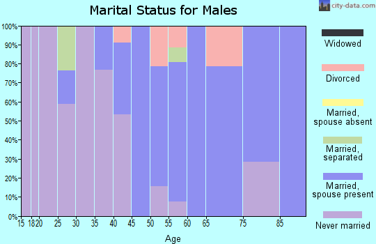 Zip code 13841 marital status for males