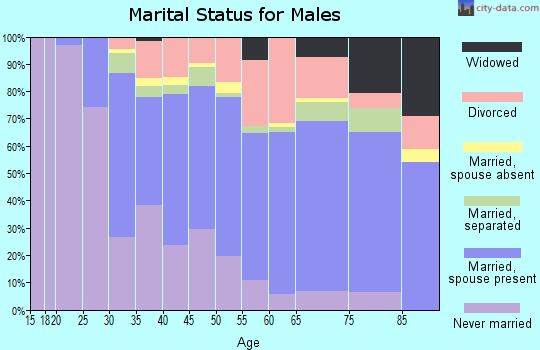 Zip code 13901 marital status for males