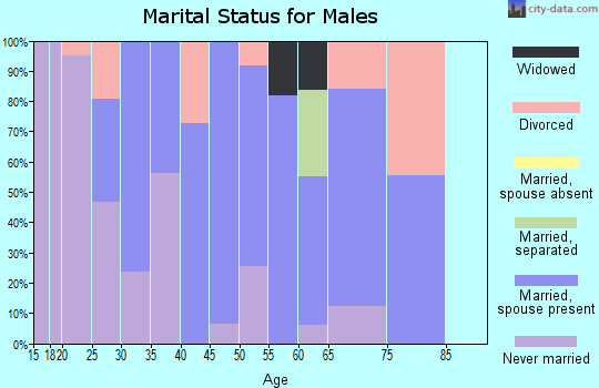 Zip code 14030 marital status for males