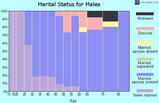 Zip code 14085 marital status for males