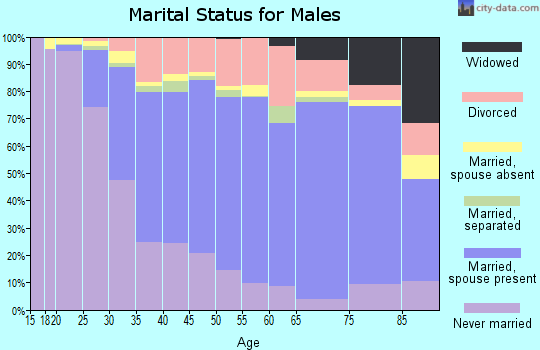 Zip code 14094 marital status for males