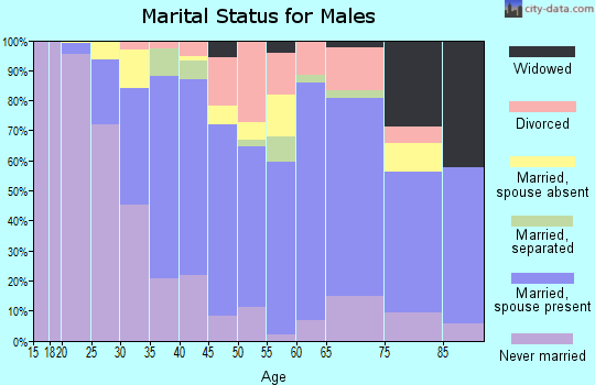 Zip code 14103 marital status for males