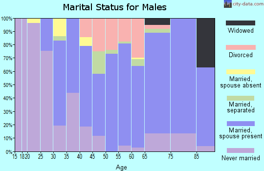 Zip code 14141 marital status for males