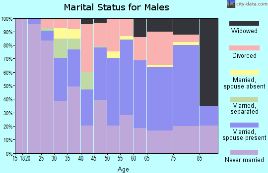Zip code 14210 marital status for males