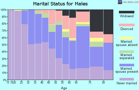 Zip code 14211 marital status for males