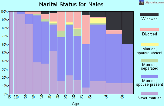 Zip code 14305 marital status for males