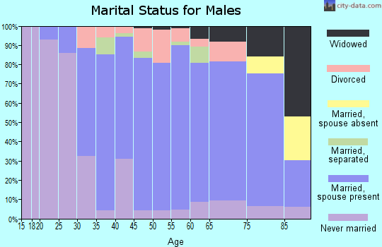 Zip code 14420 marital status for males
