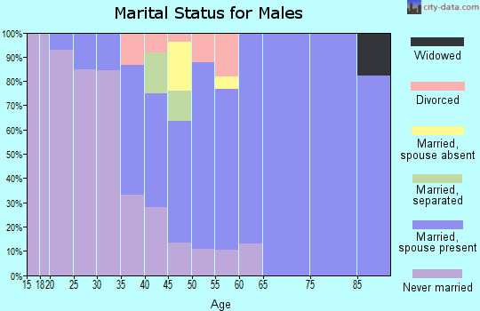 Zip code 14422 marital status for males