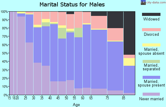 Zip code 14424 marital status for males