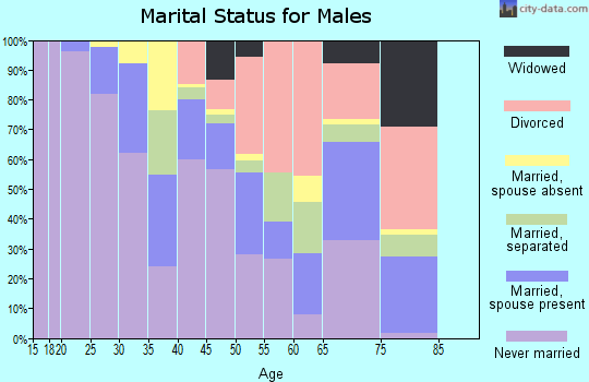 Zip code 14605 marital status for males