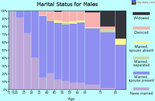 Zip code 14624 marital status for males