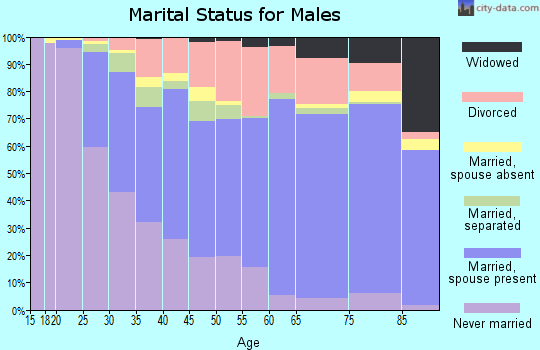 Zip code 14701 marital status for males