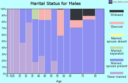 Zip code 14712 marital status for males
