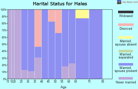 Zip code 14714 marital status for males