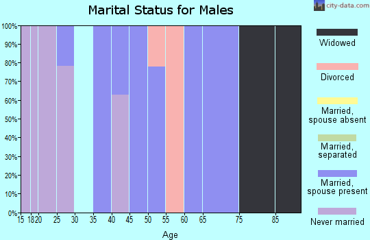 Zip code 14728 marital status for males