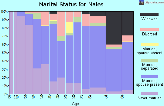 Zip code 15022 marital status for males