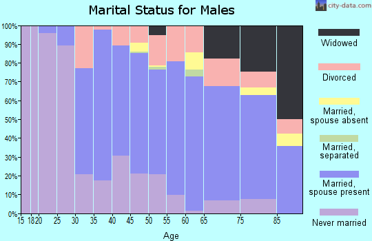 Zip code 15025 marital status for males