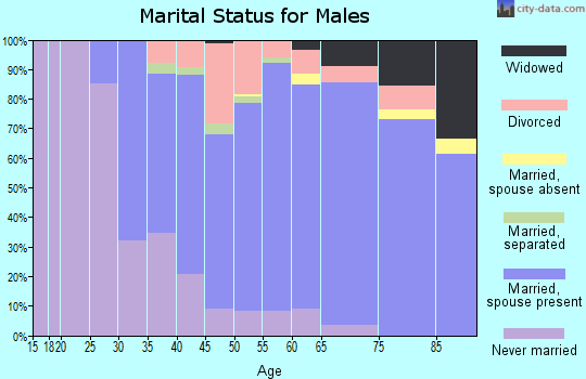 Zip code 15037 marital status for males