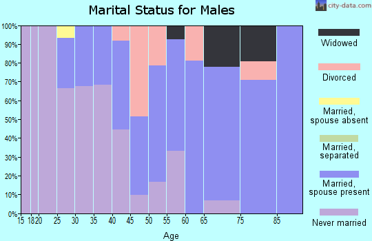 Zip code 15049 marital status for males