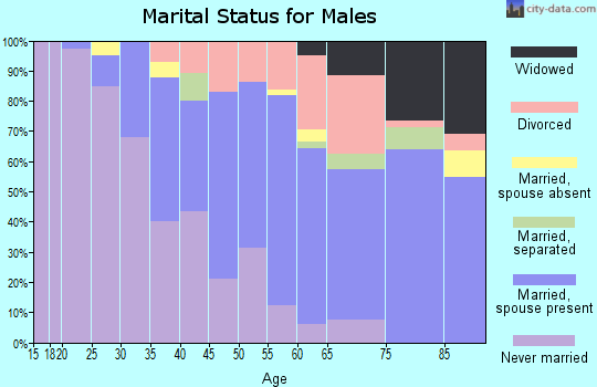 Zip code 15208 marital status for males