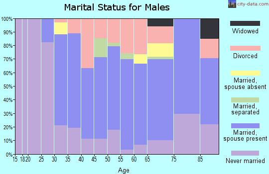 Zip code 15223 marital status for males