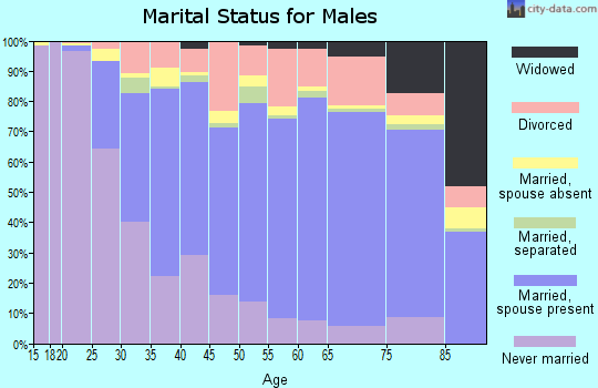 Zip code 15301 marital status for males