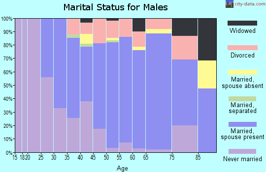 Zip code 15312 marital status for males