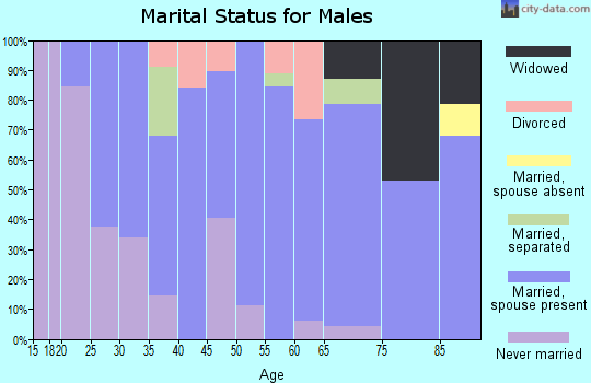 Zip code 15333 marital status for males